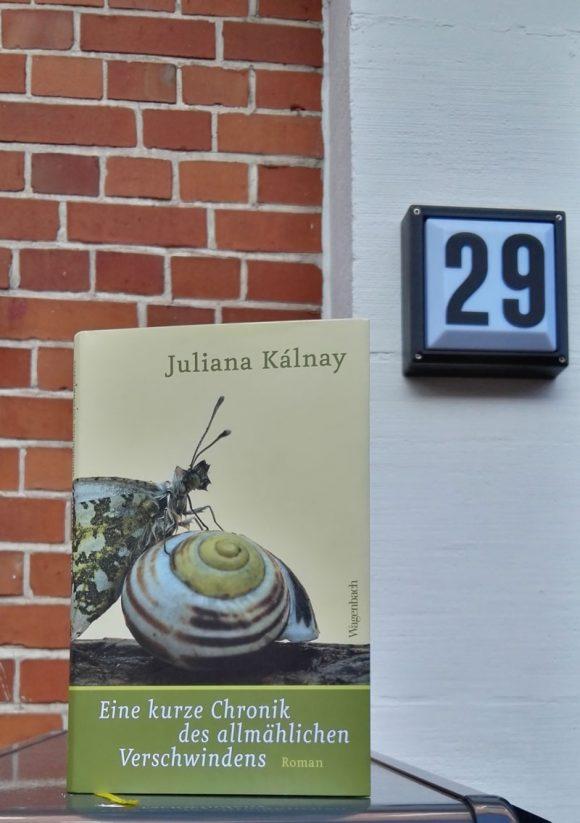 """Das Cover des Romans """"Eine kurze Chronik des allmählichen Verschwindens"""" von Juliana Kálnay"""