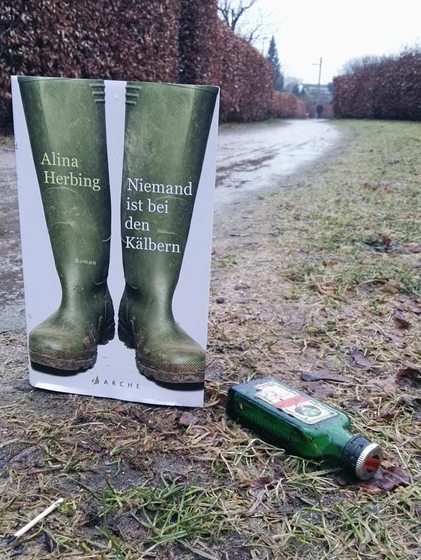 """Dieses Bild zeigt das Cover von Alina Herbings Roman """"Niemand ist bei den Kälbern""""."""