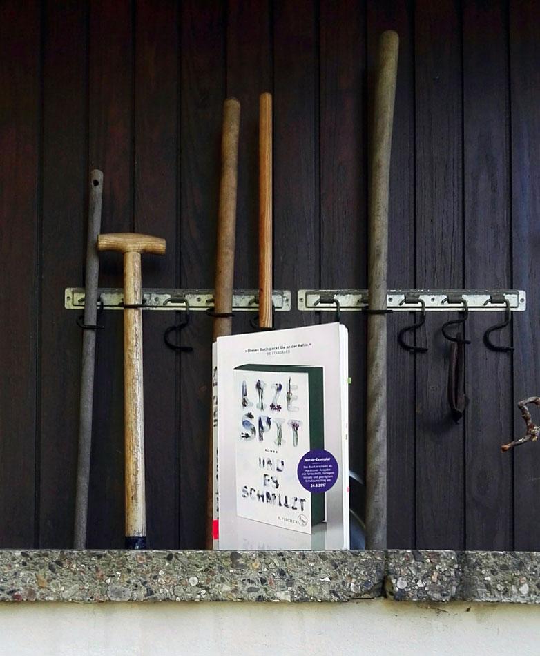 """Dieses Buch zeigt das Cover von Lize Spits Roman """"Und es schmilzt""""."""