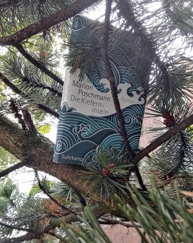 """Dieses Bild zeigt Marion Poschmanns Roman """"Die Kieferninseln""""."""